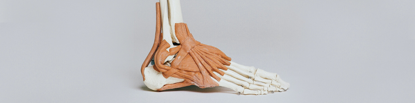 Read more about the article Is Your Ankle Mobility Limiting Your Golf Swing?